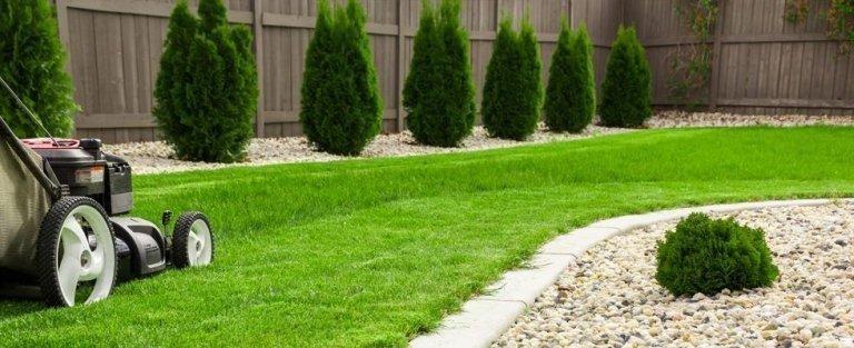 Стрижка газона: как правильно косить траву, и какой техникой воспользоваться