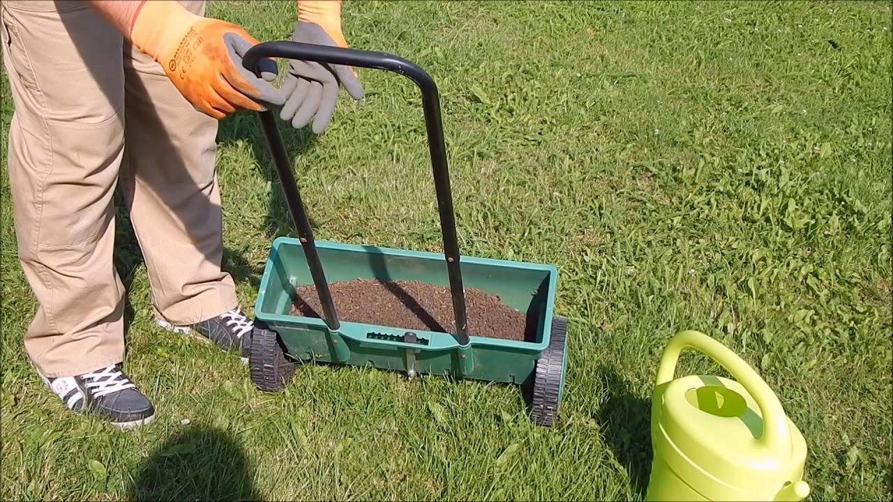 Удобрение для газона: когда следует подкормить траву